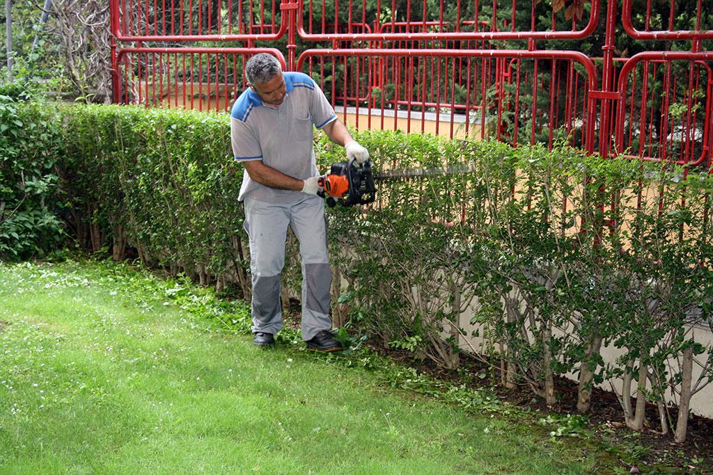Jardineria trabajos de jardinera trbore jardinera - Imagenes de jardineria ...